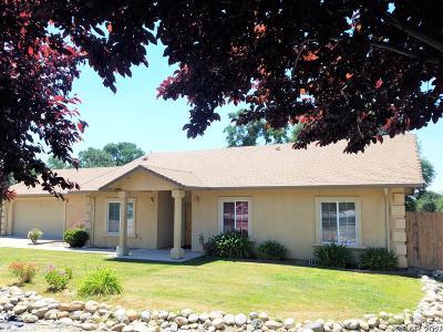 Valley Springs Single Family Home For Sale: 3634 Hartvickson Lane