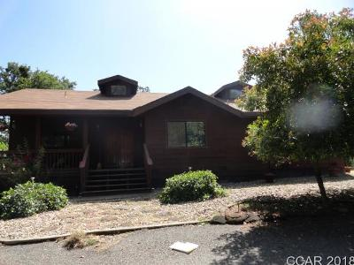 Valley Springs Single Family Home For Sale: 14219 Cobb Ln