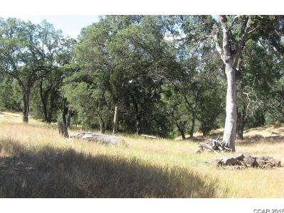 Calaveras County Residential Lots & Land For Sale: Shady Lane #68