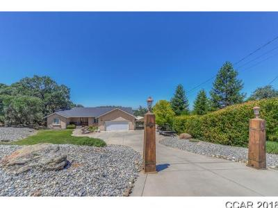 Valley Springs Single Family Home For Sale: 6022 Rippon Rd