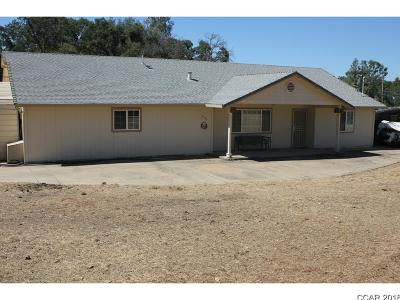 Valley Springs Single Family Home For Sale: 3594 Antonovich Rd