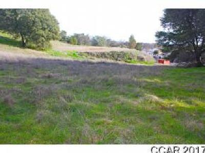 Angels Camp Residential Lots & Land For Sale: 810 Brunner Hill Dr #Pcl 2
