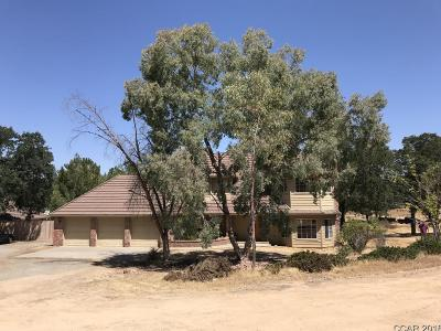 Valley Springs Single Family Home For Sale: 4126 Hillvale Dr