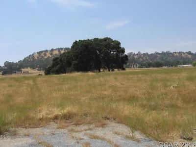 Valley Springs CA Residential Lots & Land For Sale: $229,000
