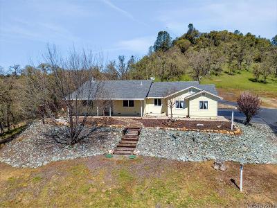 Mokelumne Hill Single Family Home For Sale: 5072 Lombardi #25