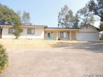 Valley Springs Single Family Home For Sale: 657 Spyglass