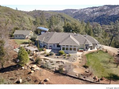 Murphys Single Family Home For Sale: 3561 Sheep Ranch Rd #.