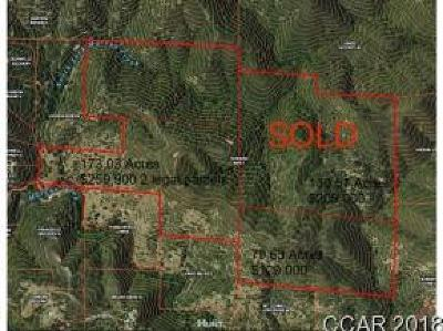 San Andreas Residential Lots & Land For Sale: Nsa 173.03 Acres Leonard Rd #045,047