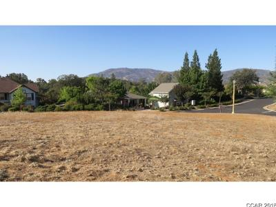 Angels Camp Residential Lots & Land For Sale: Lot 138 Smith Flat Road #138
