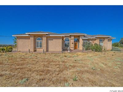 Valley Springs Single Family Home For Sale: 5348 Messing Road