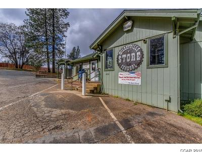 Commercial For Sale: 4052 Blizzard Mine Rd #.