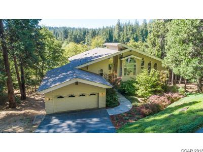 Angels Camp, Arnold, Avery, Bear Valley, Camp Connell, Copperopolis, Dorrington, Douglas Flat, Hathaway Pines, Mokelumne Hill, Mountain Ranch, Murphys, Paloma, Railroad Flat, San Andreas, Sheep Ranch, Vallecito, Valley Springs Single Family Home For Sale: 1236 Brae Burn Drive #133/10