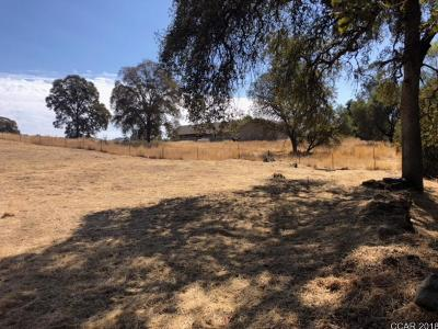 Angels Camp Residential Lots & Land For Sale: Purdy Rd. #815