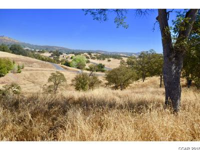 Copperopolis Residential Lots & Land For Sale: 1122 Acorn #--