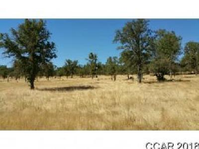 Valley Springs Residential Lots & Land For Sale: Hogan Dam Road #00