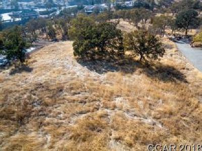 Copperopolis Residential Lots & Land For Sale: 1245 Cheyenne #922/3