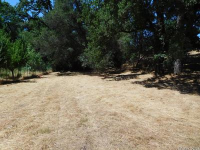 Angels Camp Residential Lots & Land For Sale: 1242 Suzanne Dr #7