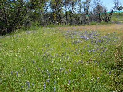 Mountain Ranch CA Residential Lots & Land For Sale: $150,000