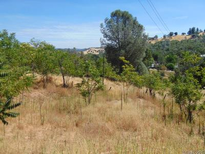Angels Camp Residential Lots & Land For Sale: Summit #14
