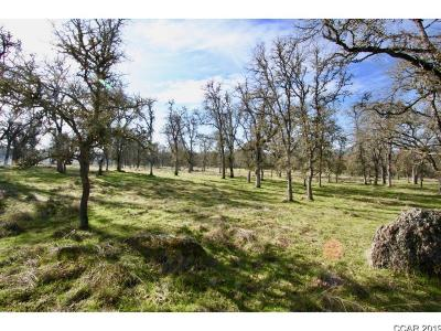Angels Camp Residential Lots & Land For Sale: 00 West Highway 4