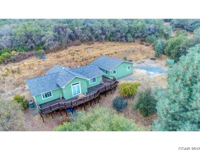 Angels Camp Single Family Home For Sale: 5228 Morgan Rd #167