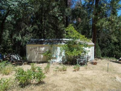 Wilseyville CA Residential Lots & Land For Sale: $145,000