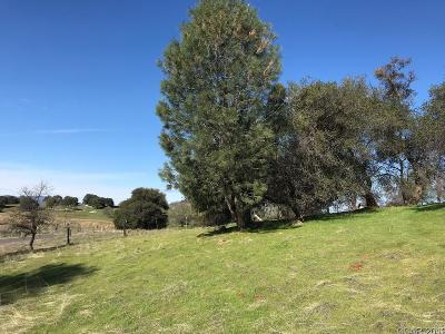 Angels Camp Residential Lots & Land For Sale: Parcel B Stockton Road #3