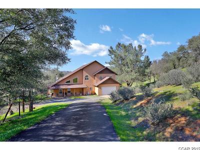 Copperopolis Single Family Home For Sale: 434 Pinon #1042