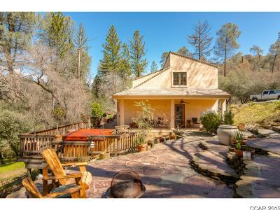 Murphys Single Family Home For Sale: 3340 Canyon Ct #lot5/uni