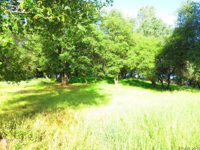 Angels Camp Residential Lots & Land For Sale: Smith Flat Road #300
