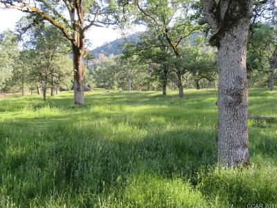 Angels Camp Residential Lots & Land For Sale: 6855 Jaquima Dr #111