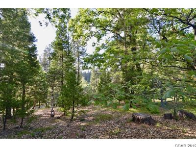 Murphys Residential Lots & Land For Sale: 1616 Sandalwood Drive #15