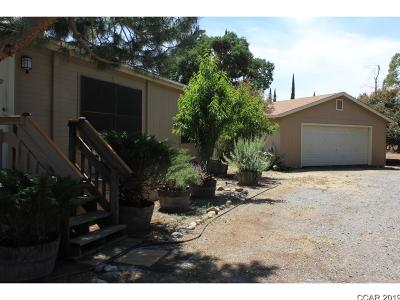 Valley Springs Single Family Home For Sale: 8832 Crosby #983