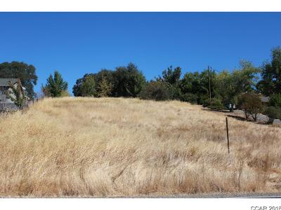 Valley Springs Residential Lots & Land For Sale: 11485 Milton #1041