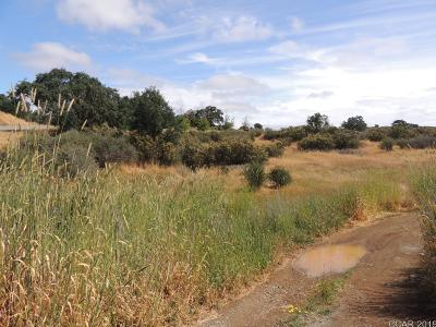 Valley Springs Residential Lots & Land For Sale: 7989 Sparrowk #1496