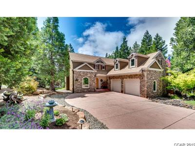 Murphys Single Family Home For Sale: 634 Larkspur Ct. #26