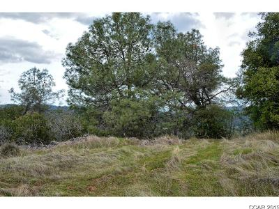 Murphys Residential Lots & Land For Sale: Ponderosa #PCLA