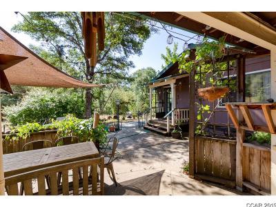 Vallecito Single Family Home For Sale: 2664 Batten Rd #1