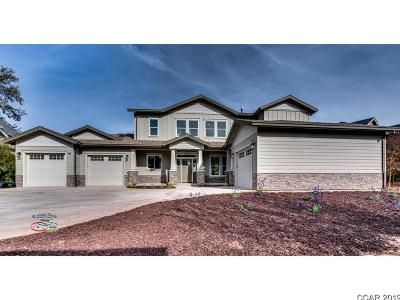 Ghc - Greenhorn Creek, Sad - Saddle Creek Subdivision, Fms - Forest Meadows Single Family Home For Sale: 453 Olivia Place #207
