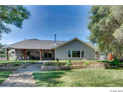 Angels Camp, Arnold, Avery, Bear Valley, Camp Connell, Copperopolis, Dorrington, Douglas Flat, Hathaway Pines, Mokelumne Hill, Mountain Ranch, Murphys, Paloma, Railroad Flat, San Andreas, Sheep Ranch, Vallecito, Valley Springs Single Family Home For Sale: 10155 Oak Valley Road #33