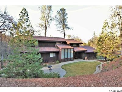 Sonora Single Family Home For Sale: 21030 Stott Lane #9