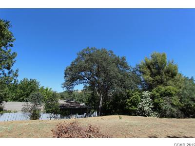 Angels Camp Residential Lots & Land For Sale: 1232 Suzanne Court #10