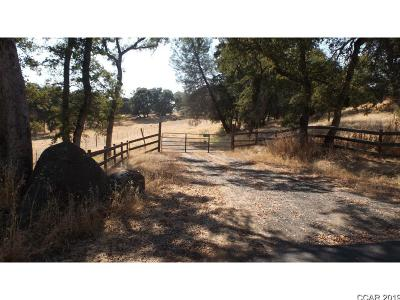 Sonora Residential Lots & Land For Sale: 17080 Murphy Rd #00