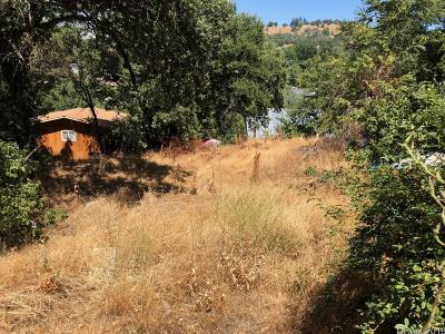 Angels Camp Residential Lots & Land For Sale: 1350 Love Street #10