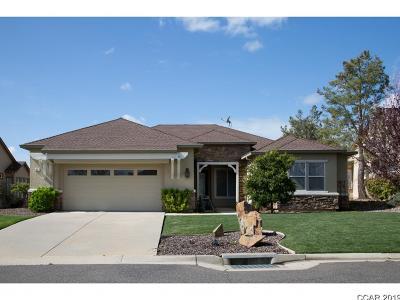 Copperopolis Single Family Home For Sale: 217 Rock Ridge Ln #305