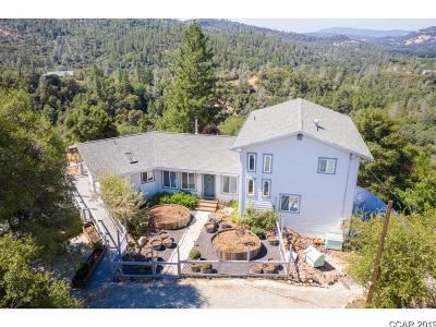 Murphys Single Family Home For Sale: 2235 Skunk Ranch Rd #24