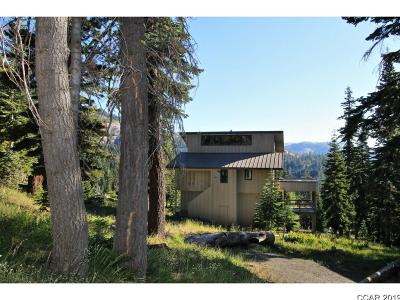 Bear Valley Single Family Home For Sale: 474 Snowshoe Road #373