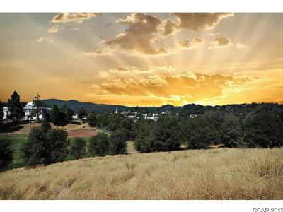 Sonora Residential Lots & Land For Sale: 310 & 324 Morning Star Drive #20, 21