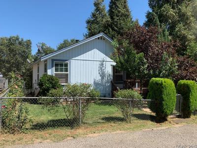 Wilseyville Single Family Home For Sale: 4054 Blagen Blvd #9