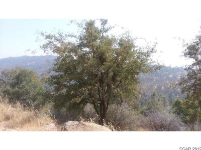 Angels Camp Residential Lots & Land For Sale: 2153 Roan Way #18